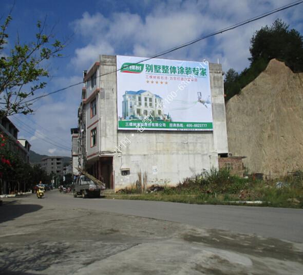 三棵树路墙广告(墙体广告)