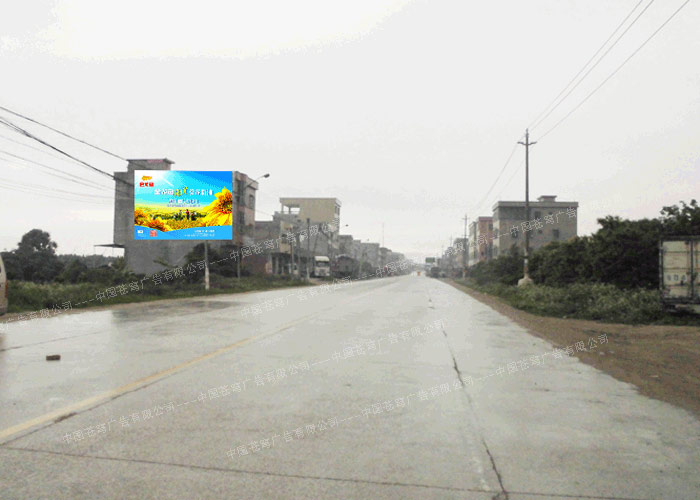 金龙鱼路墙广告(喷绘)