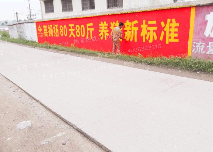 杨翔饲料路墙广告(手绘)