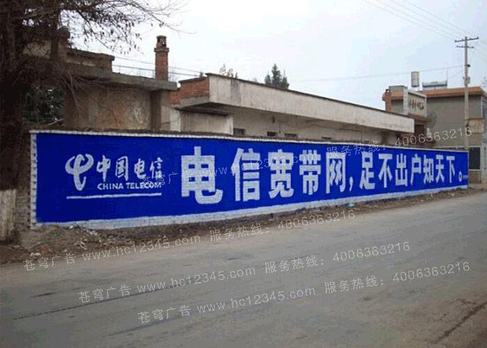 中国电信路墙广告(手绘)